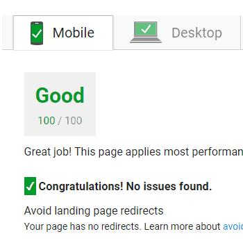 Google PageSpeed Score 100
